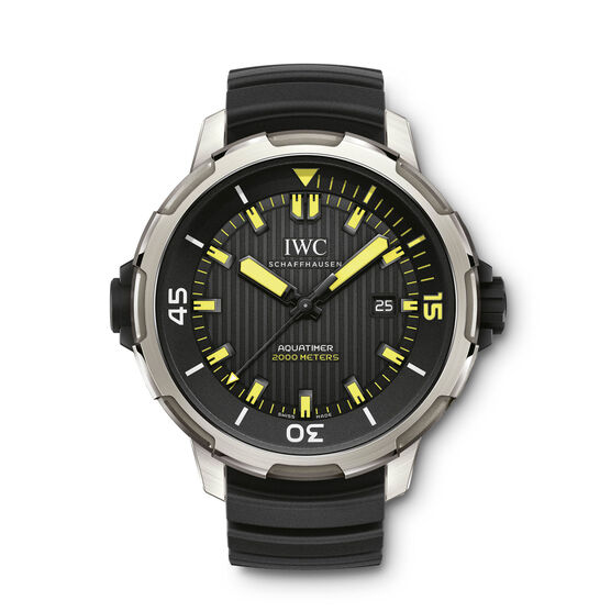 IWC Aquatimer Automatic 2000 Watch in Titanium