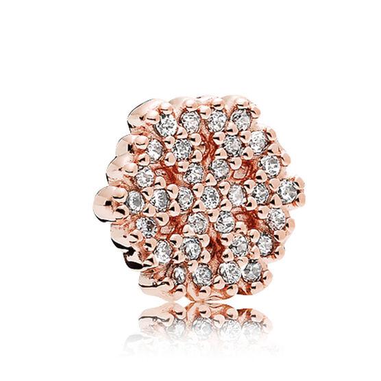Pandora Rose™ Shimmering Snowflake CZ Petite Locket Charm