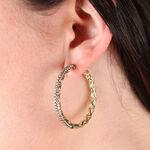 Brown Diamond Hoop Earrings 14K, 3.60 ctw.