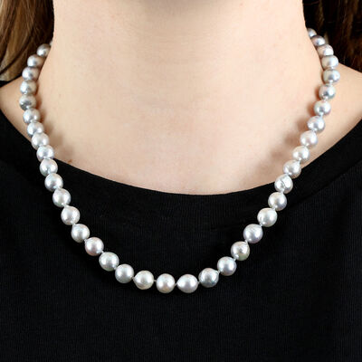 Gray Cultured Akoya Pearl Strand Necklace in Silver