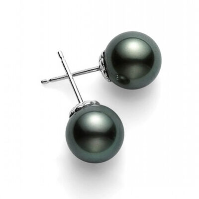 Mikimoto Black South Sea Cultured Pearl Stud Earrings 18K, 10mm